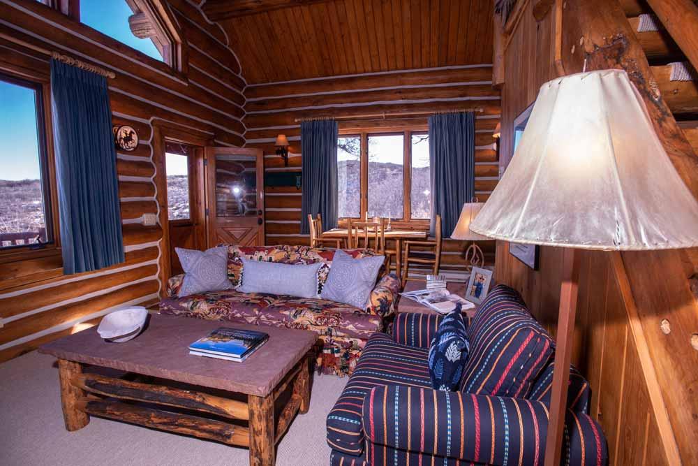 cook-cabin-tv-room